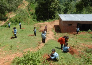 3_Students of Shree Kalika Primary School involved in the plantation