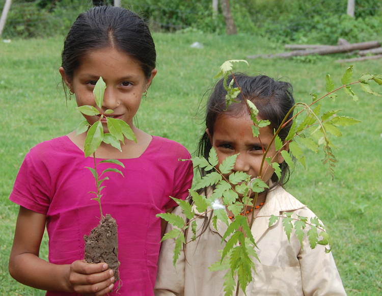 6_Students of Shree Kalika Primary School with tree plants