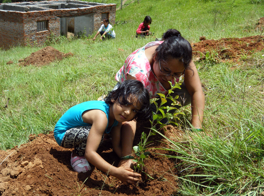 6_Tree plantation @ Kalika