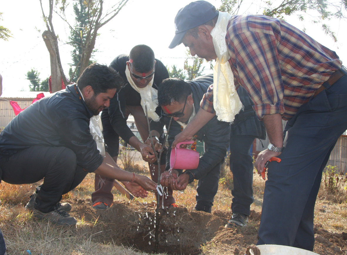 11_Tree plantation at Raktakali school