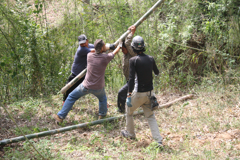 Cutting of bamboos for construction of temporary rooms at Shree Seti Devi