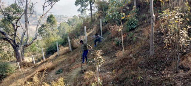 PAX EARTH CONTRIBUTED TO CREATE A FRUIT GARDEN AT SCHOOLS IN KAVRE